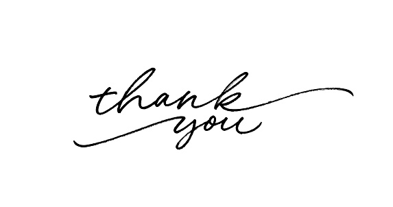 Thank you ink brush vector lettering. Thank you modern phrase handwritten vector calligraphy with swooshes.