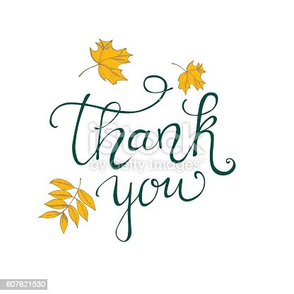 Thank You Lettering Design Stock Vector Art More Images