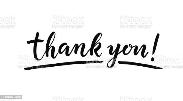 Beyaz Arka Plan Üzerine Yazı Teşekkür Ederiz Elle Çizilmiş Yazıt Stok Vektör Sanatı & Bilgisayar Grafiği'nin Daha Fazla Görseli