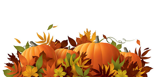 thanksgiving background pumpkins and autumn leaves harvesting stock illustrations