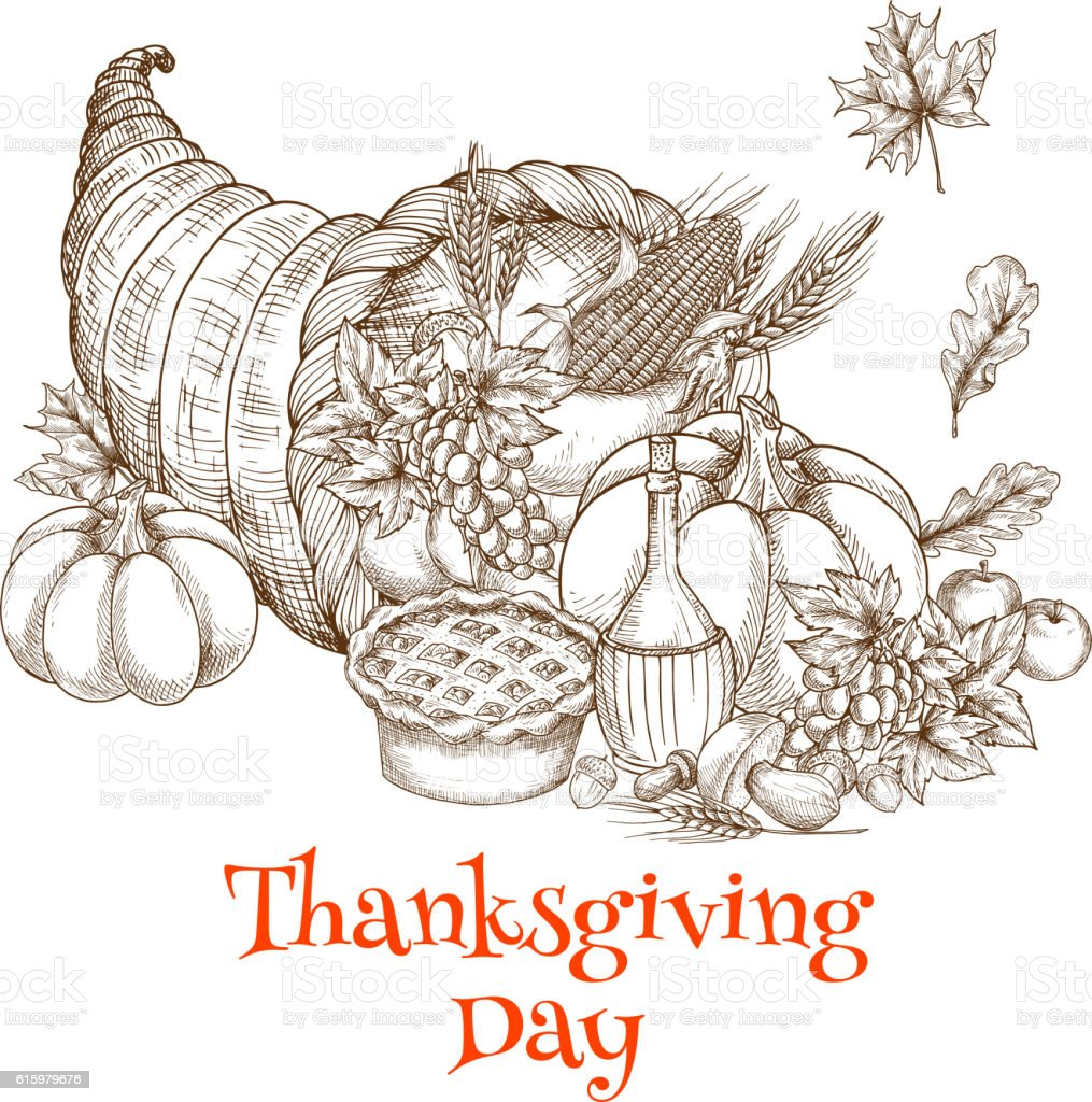 Thanksgiving Day cornucopia greeting sketch vector art illustration