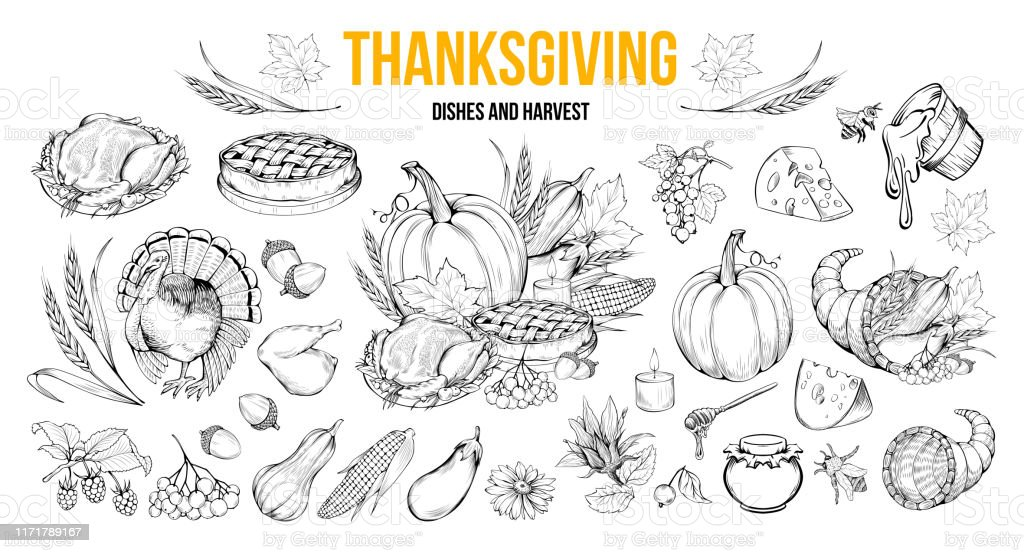 - Thanksgiving Dishes And Harvest Illustrations Set Stock Illustration -  Download Image Now - IStock