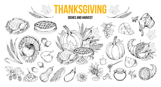 thanksgiving dishes and harvest illustrations set - thanksgiving turkey stock illustrations