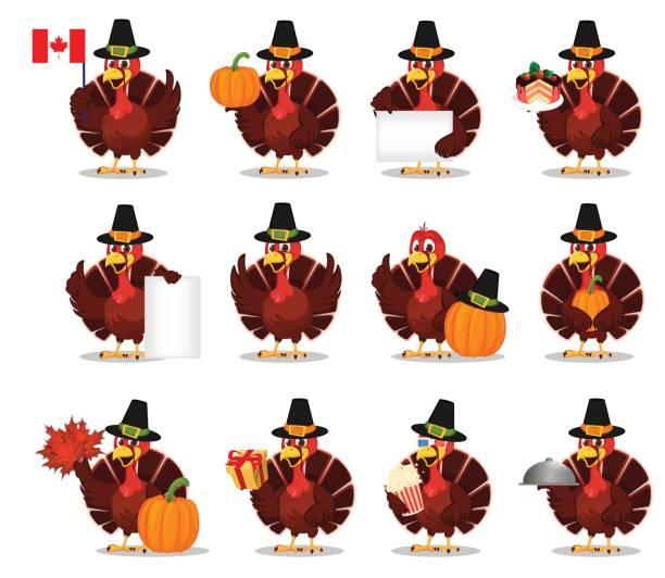 thanksgiving greeting card with a turkey bird wearing a pilgrim hat. set - turkey stock illustrations