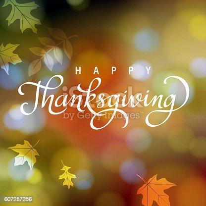 istock Thanksgiving in Autumn 607287256