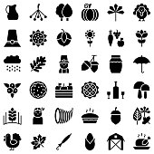 thanksgiving related icon set in design. such as turkey, pumpkin pie, autumn leaves, acorn, pillgrim, berries,honey and farming product. solid style