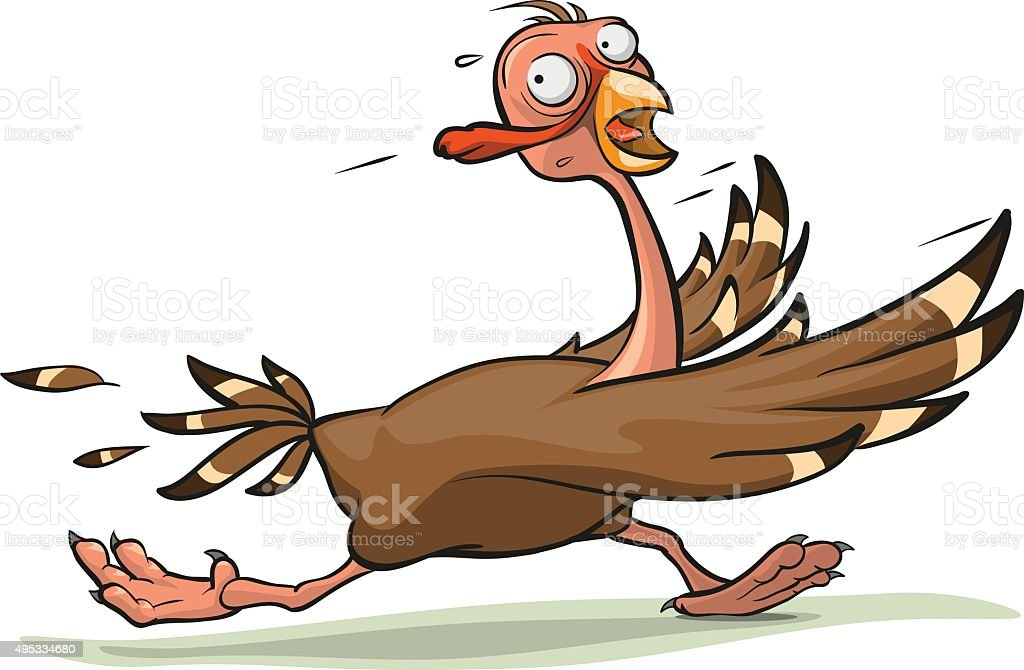 royalty free turkey running clip art vector images illustrations rh istockphoto com Running Turkey Turkey Running Away