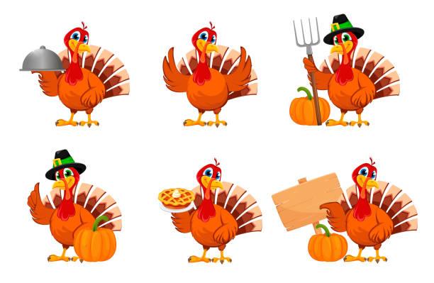 thanksgiving turkey, set of six poses - thanksgiving turkey stock illustrations