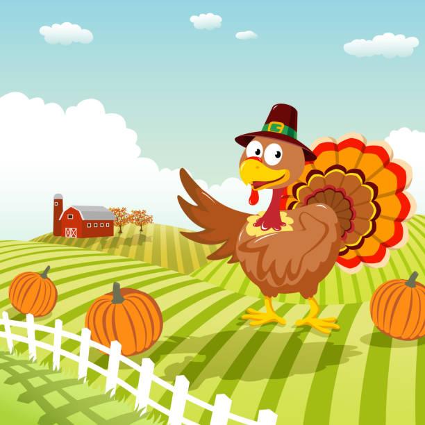 thanksgiving-truthahn - herbstgemüseanbau stock-grafiken, -clipart, -cartoons und -symbole