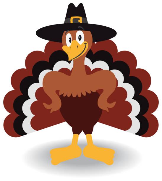 thanksgiving turkey - turkey stock illustrations