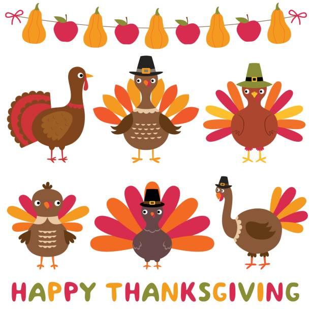 thanksgiving turkeys and decoration, isolated design element set - thanksgiving turkey stock illustrations