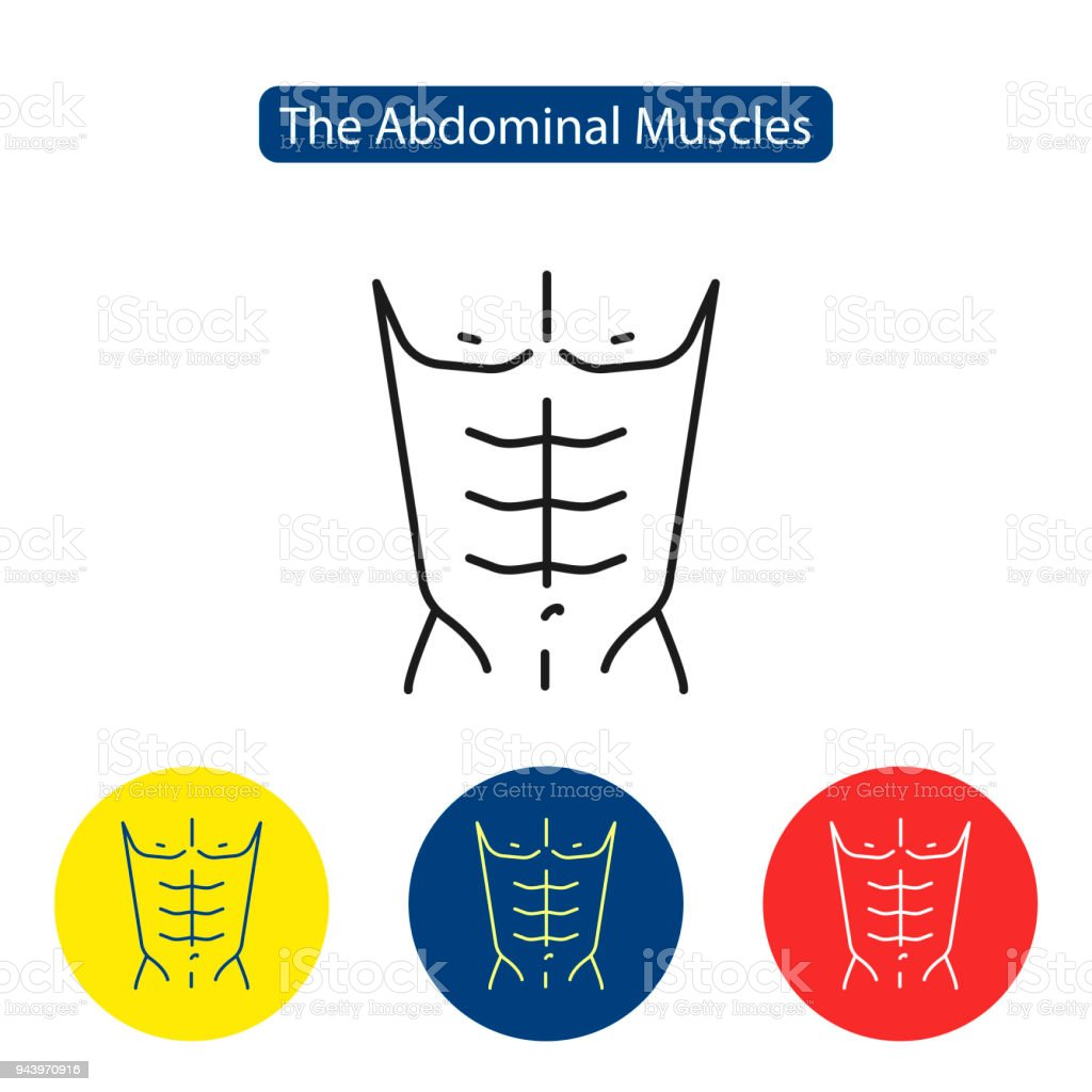 The Abdominal Muscles Fit Icon Stock Vector Art More Images Of