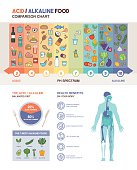 The acidic alkaline diet food chart infographics with food icons on a ph scale and body with health benefits icons