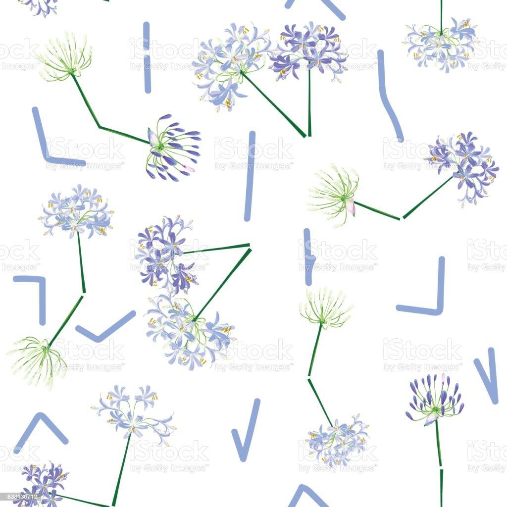 The agapanthus flower is time. vector art illustration