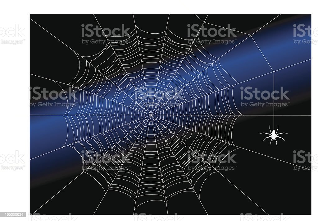 The almost perfect spiderweb royalty-free the almost perfect spiderweb stock vector art & more images of attending