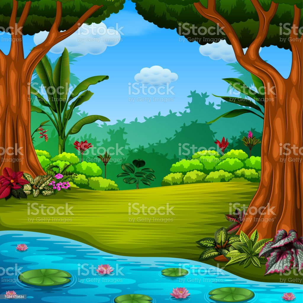 The Beautiful Forest With The Lake And Lotus Stock Vector Art More