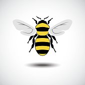 Vector Illustration : The Bee.