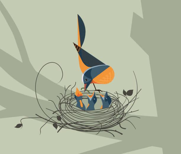 bildbanksillustrationer, clip art samt tecknat material och ikoner med fågeln utfodrar honan ungarna i boet - bo