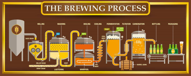 the brewing process info-graphic with beer design elements on brown background with golden frame - alejomiranda stock illustrations