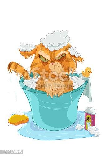 istock The Cat Bath 1250126846