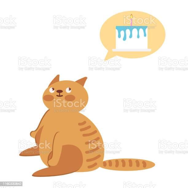 The cat is sitting on a white background vector id1160330842?b=1&k=6&m=1160330842&s=612x612&h=lz8uz3vq7jnps0oei56atnjouz1b36vm5hgj8uzxlzu=