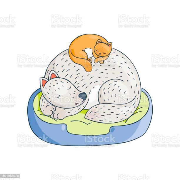 The cat is sleeping comfortably on the dog furry friends sweet dreams vector id891968970?b=1&k=6&m=891968970&s=612x612&h=ayhsvriehvehzqvgwmc2dxxuopi4j2rr6bvcsritpia=