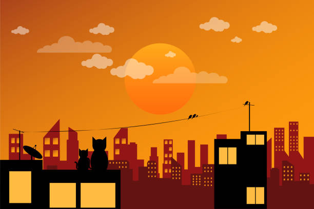 the cat watching the sunset on the roof of the building - dusk stock illustrations