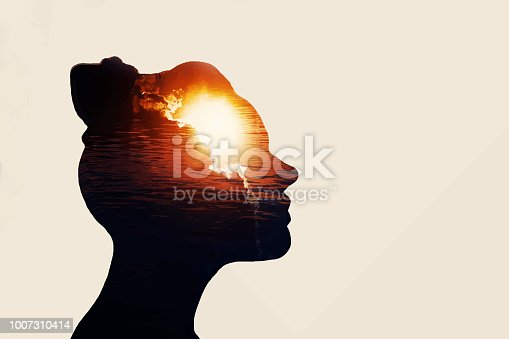 istock The concept of the power of knowledge. Silhouette of smart girl. 1007310414