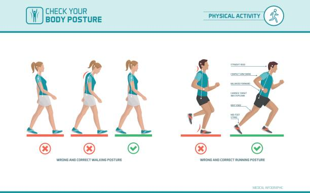 The correct walking and running posture The correct walking and running posture: body ergonomics, sports and health infographic posture stock illustrations