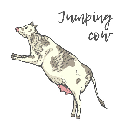 The cow jumped.