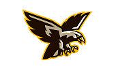 The crest of a flying hawk. A dangerous predator, an animal, a bird, a mascot of a sports club. Vector illustration.