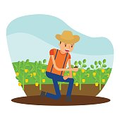 the cute farmer who is planting crops paprika in the fields, cartoon character