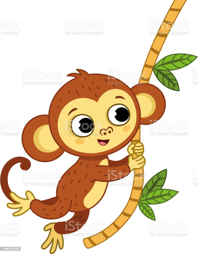 The cute monkey is swinging. royalty-free the cute monkey is swinging stock vector art & more images of animal