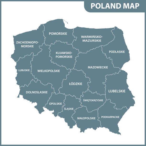 the detailed map of poland with regions or states - polska stock illustrations