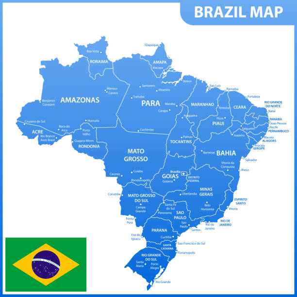 ilustrações, clipart, desenhos animados e ícones de o mapa detalhado do brasil com regiões ou estados e cidades, capitais, bandeira nacional - manaus