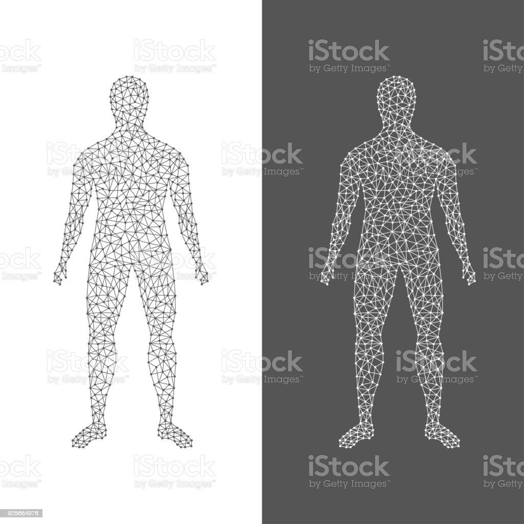 Der Digitale Mensch Zusammenfassung Des Menschlichen Körpers Auf ...
