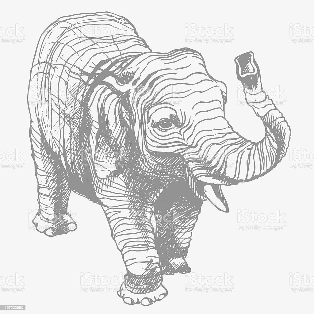 The elephant. Vector illustration. vector art illustration