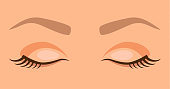 Closed eyes with eyelashes and eyebrows in a cartoon style. Woman face vector illustration. Sleep.