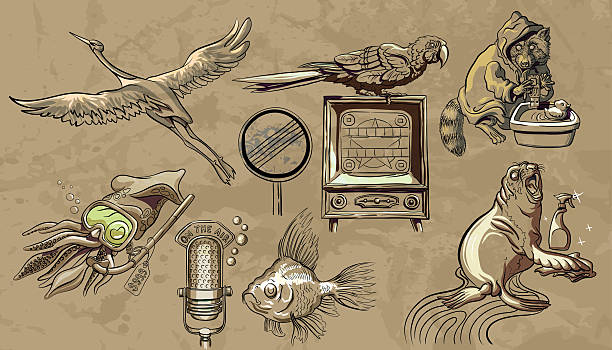 """The fable about evolution - animals pretend people Illustration - medley of my most successful figures for November 2016. The set includes: a stork and a road sign """"deregulation"""", the squid in the diving mask, fish with a microphone, a seal cleaner, raccoon hacker and pop parrot. Against the background - texture of crumpled paper. Each story is grouped as a separate group. Shadows and reflections on the figure are made so that they will look favorably on any background. deregulation stock illustrations"""