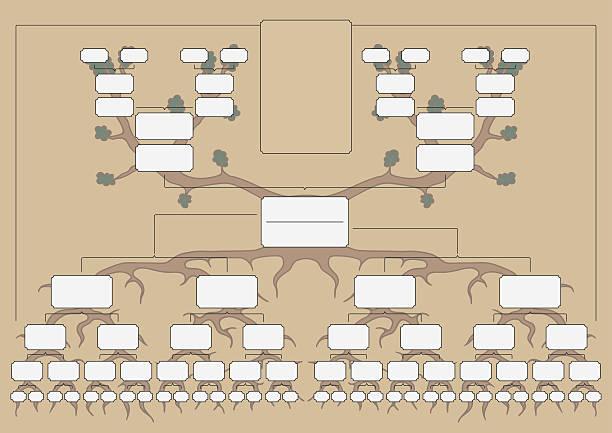 the family tree - stammbäume stock-grafiken, -clipart, -cartoons und -symbole