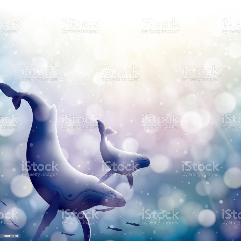 The family whales swimming in shining ocean - Royalty-free Animal stock vector