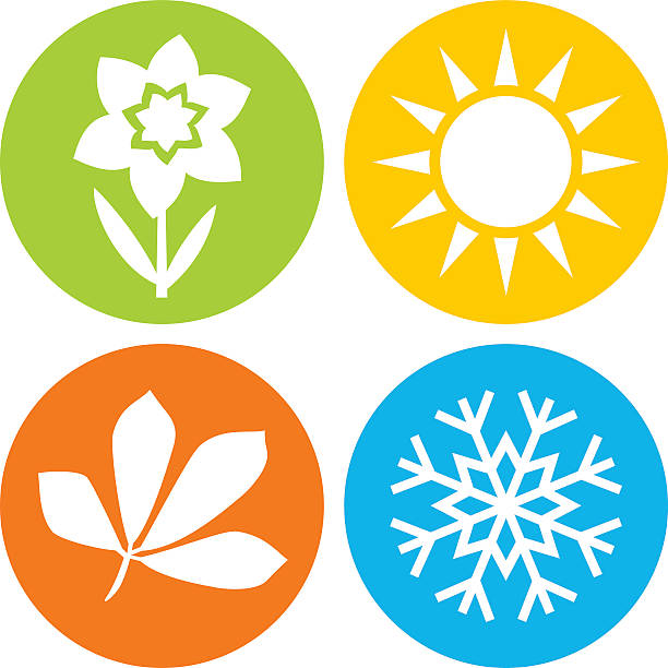 the four seasons depicted in four different circles - four seasons stock illustrations