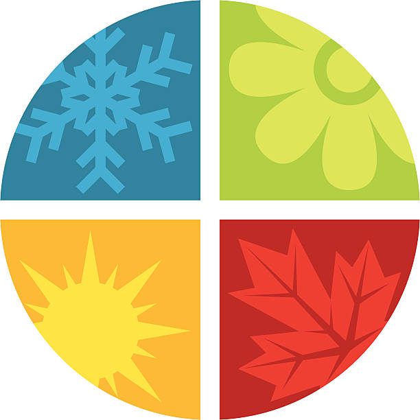 the four seasons - four seasons stock illustrations