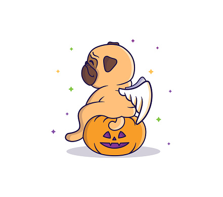 The Funny pug-angel sitting on the pumpkin at night under the colorful start