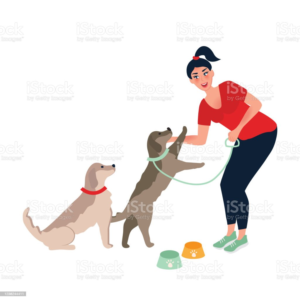 Gadis Itu Memberi Makan Dan Membelai Anjing Makan Malam Anjing Memberi Makan Dan Merawat Hewan Peliharaan Ilustrasi Vektor Ilustrasi Stok Unduh Gambar Sekarang Istock