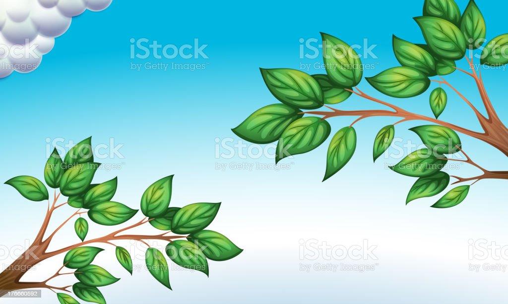 El verde hojas y cielo azul ilustración de el verde hojas y cielo azul y más banco de imágenes de azul libre de derechos