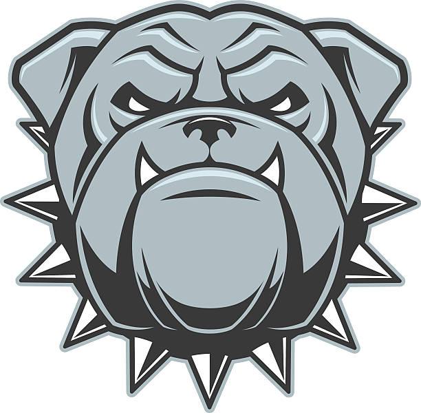 bildbanksillustrationer, clip art samt tecknat material och ikoner med the head of a fierce bulldog - bulldog