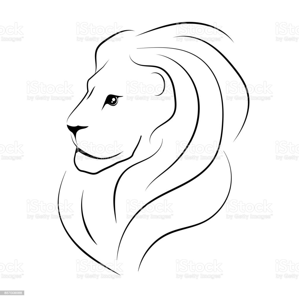 The Head Of The Lion Sideways Black Outline Stock Illustration Download Image Now Istock The lion (panthera leo) is a species in the family felidae and a member of the genus panthera. the head of the lion sideways black outline stock illustration download image now istock