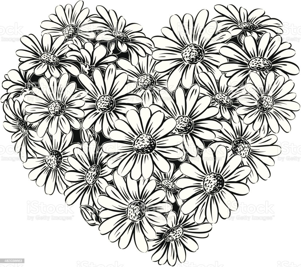 the heart of daisies vector art illustration