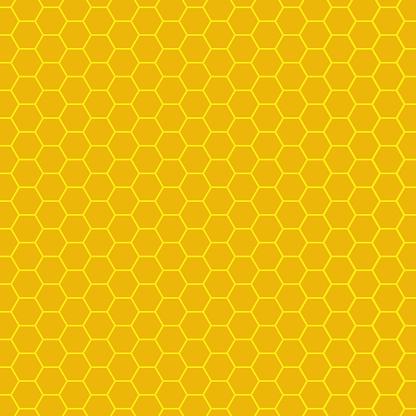 The honeycomb, hexagon